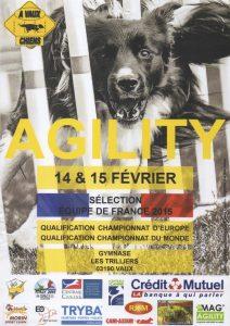 1er Sélectif FCI 2015 (EO+EDF) @ Vaux | Vaux | Auvergne | France