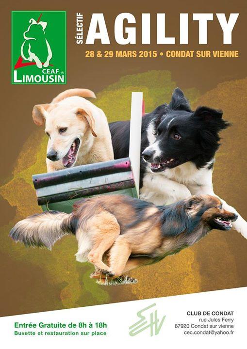 Sélectif FCI de Condat-sur-Vienne — Message des coachs