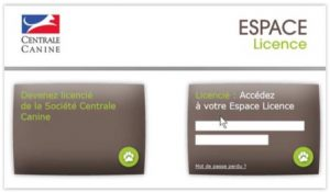 Espace licence