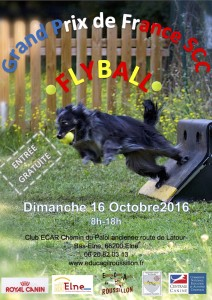 Affiche GPF flyball 2016
