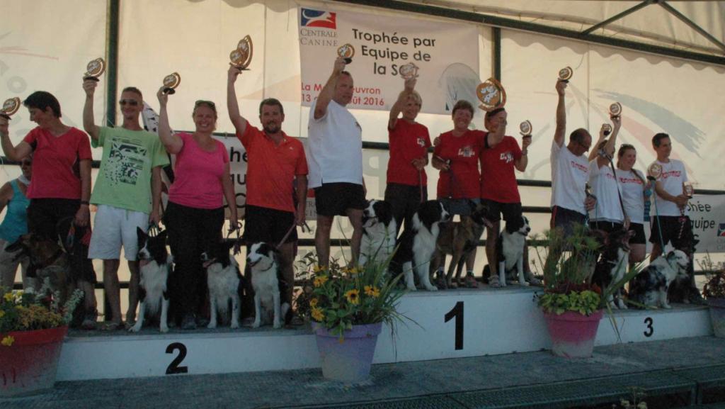 Trophée Agility par Équipes 2016