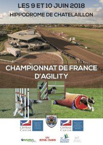 Championnat de France d'Agility 2018 @ Châtelaillon-Plage (17340)