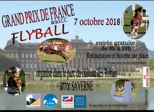 Grand Prix de France de Flyball 2018 @ Saverne (67700)