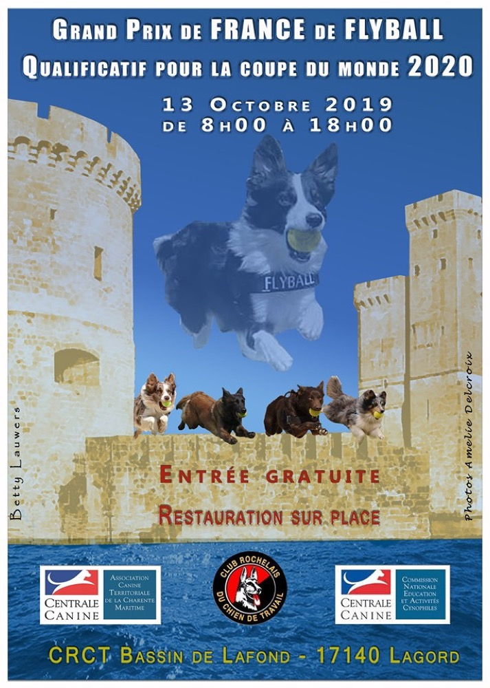 Grand Prix de France de Flyball 2019 @ Lagord (17140)