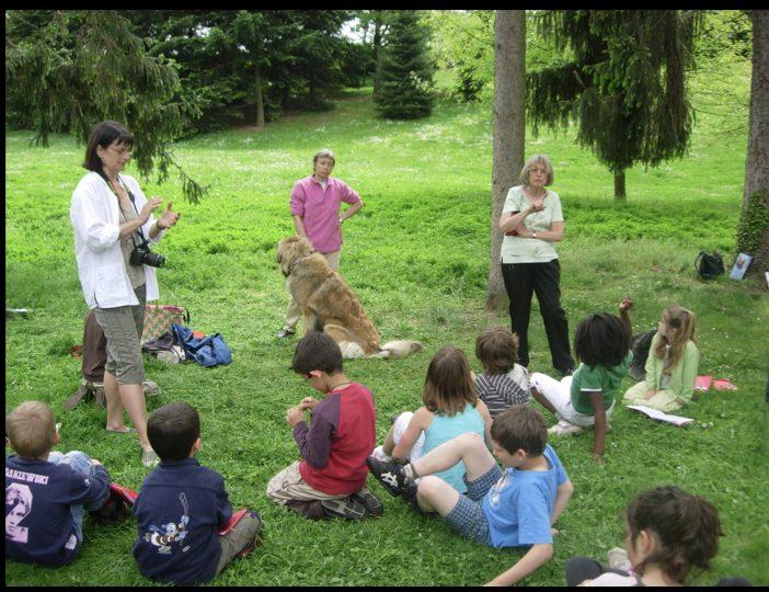 Diaporama-chiens-visiteurs-Site.010