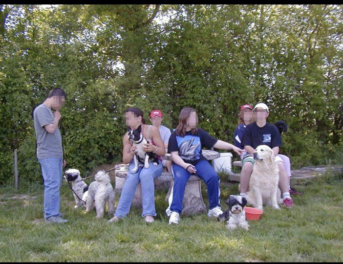 Diaporama-chiens-visiteurs-Site.015