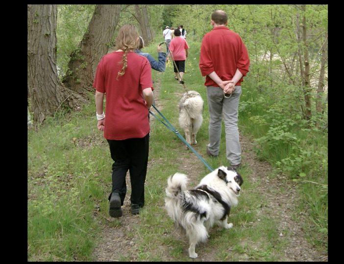 Diaporama-chiens-visiteurs-Site.016