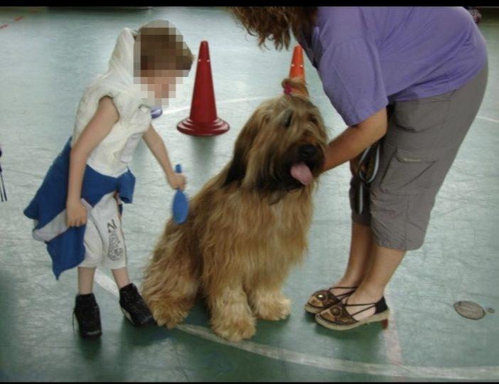 Diaporama-chiens-visiteurs-Site.020