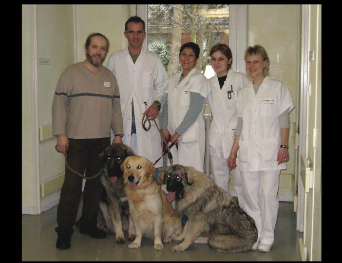 Diaporama-chiens-visiteurs-Site.022