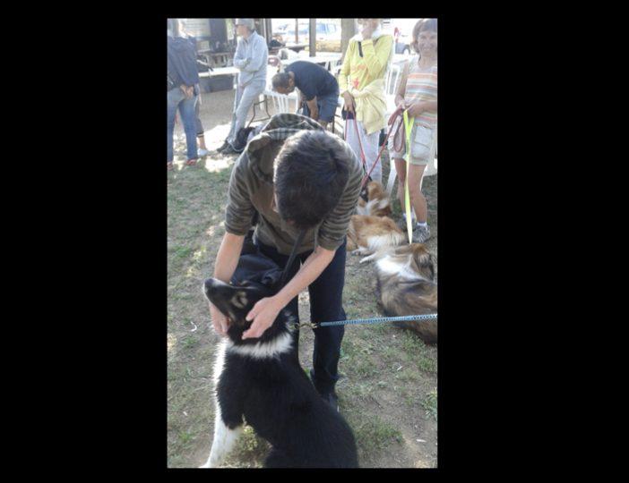 Diaporama-chiens-visiteurs-Site.033