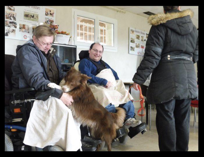 Diaporama-chiens-visiteurs-Site.034